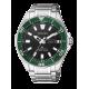 Citizen - AUTOMATIC ST - NY0071-81E